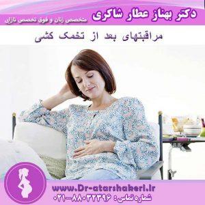 مراقبت های بعد از برداشت تخمک
