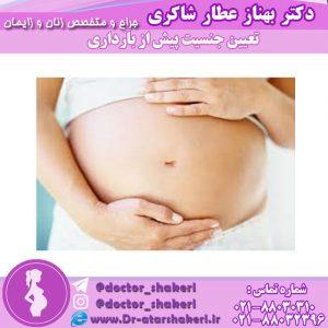 تعیین جنسیت پیش از بارداری