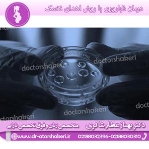 درمان ناباروری با روش اهدای تخمک